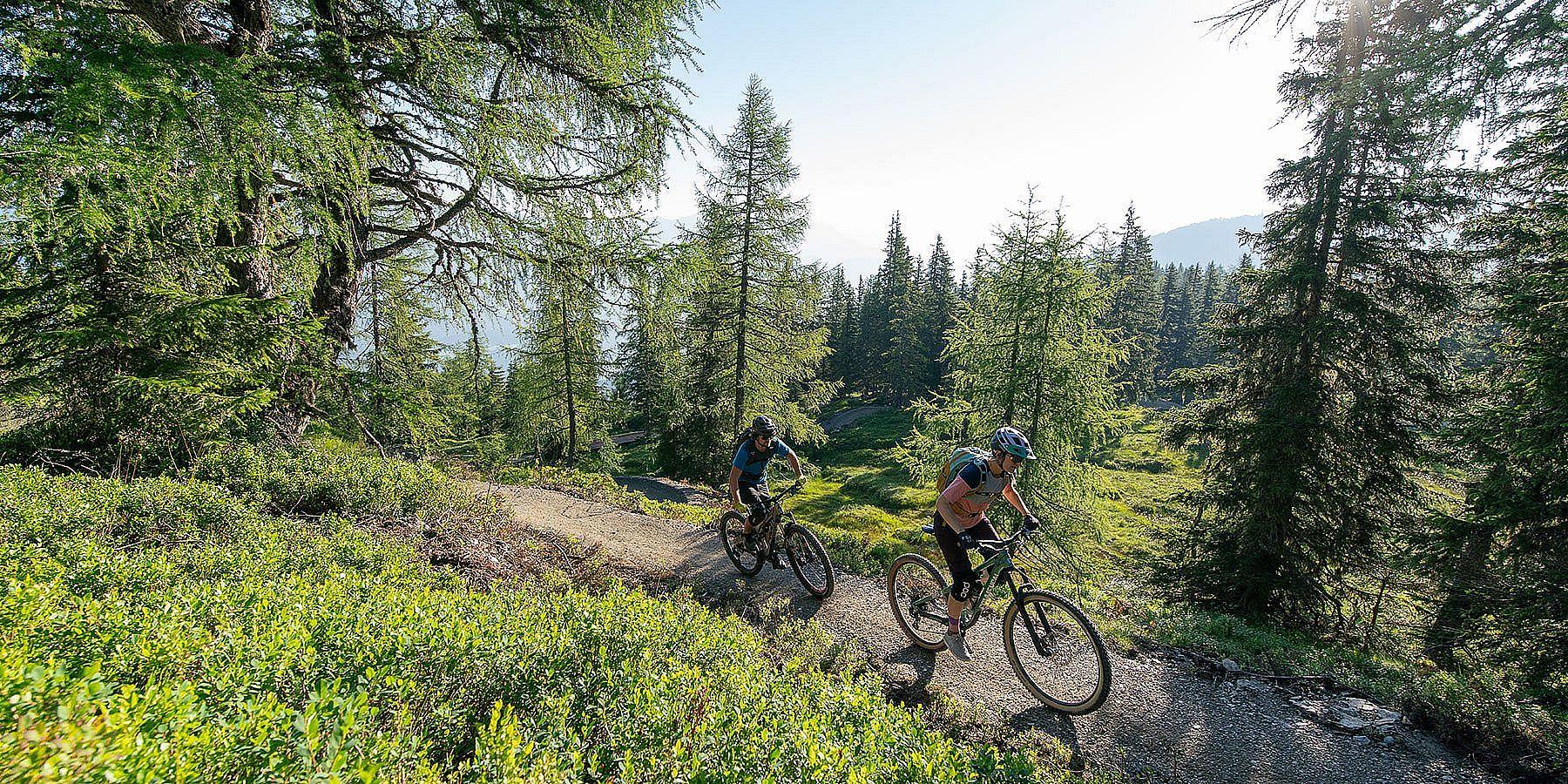 Mountainbiken im Ennstal