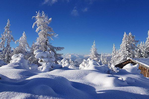 Winterurlaub im Hotel Reiter